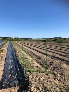 ③貸し農園(農業体験)コーナー:北側